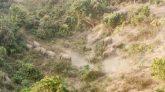 শেরপুরের সীমান্তবর্তী কোচপল্লীতে বন্য হাতি আতঙ্ক