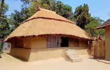 বিলুপ্তপ্রায় হাজার বছরের পরম বন্ধু ছন ও মাটির ঘর