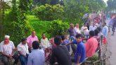 রাজবাড়ীতে জমে উঠেছে ইউপি নির্বাচনের প্রচারণা
